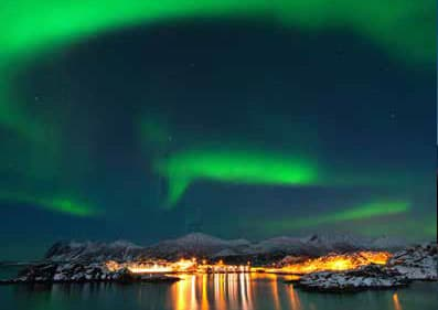 magical-winter-adventures-on-senja-wildlife-northern-lights-dogsledding