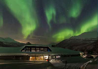 visit-to-polar-park-with-accommodation-at-fjellkysten